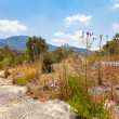 Stock Photo: Road in Northern Cyprus