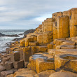 Giant's Causeway, Northern Ireland — 图库照片 #38393953
