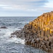 Giant's Causeway, Northern Ireland — Stock Photo #38394449