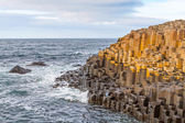 Giant's Causeway, Northern Ireland — 图库照片