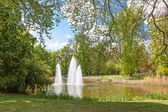 Water Fountain in the Municipal Park — Stock Photo