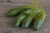 Cucumber on a wooden table — Stock Photo