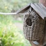 Bird house in a garden — Stock Photo #30472987