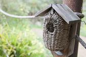 Bird house in a garden — Stock Photo