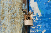 Old and wet iron door with padlock — Stock Photo