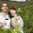 Young couple in a vineyard — Stock Photo #31499705
