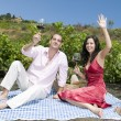 Couple in a picnic tasting wine — Stock Photo #31500379