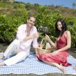 Couple in a picnic tasting wine — Stock Photo #31500533