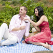 Couple in a picnic tasting wine — Stock Photo #31501035