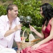 Couple in a picnic tasting wine — Stock Photo #31501085