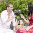 Couple in a picnic tasting wine — Stock Photo #31501645