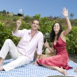 Couple in a picnic tasting wine — Stock Photo #31501771