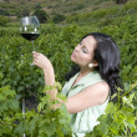 Woman tasting red wine — Stock Photo