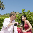 Couple in a picnic tasting wine — Stock Photo #31502121