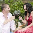 Couple in a picnic tasting wine — Stock Photo #31508143