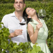 Young couple in a vineyard — Stock Photo #31509037