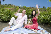 Couple in a picnic tasting wine — Stock Photo