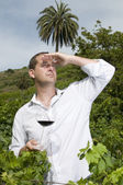 Agrarian man in a vineyard — Stock Photo