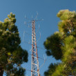 Communication tower in the forest — Stock Photo