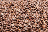 Coffee grain texture or background — Stock Photo