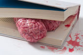Tired brain in the book — Stock Photo