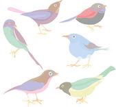 Birds — Vetorial Stock