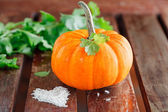 Yellow pumpkin with green leaves and rice — Stock Photo
