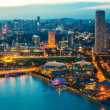 Singapore skyline at night — Stock Photo #43441865