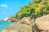 Tropical beach - thailand, koh samui — Stock Photo