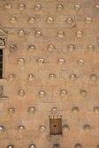 Detalle de casa de las conchas — Foto de Stock