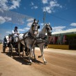 People in carriage horses — Stock Photo