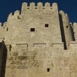 Arabian tower Calahorra — Stock Photo #32564051