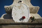 Stone memorial plaque with carnations — Stock Photo