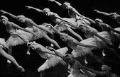 Swan girls swiming — Stock Photo