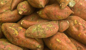 Sweet Potatoes — Foto de Stock