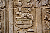 Hieroglyphs of crocodile — Stock Photo