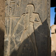 Stock Photo: Luxor carvings of pharaoh