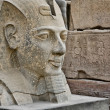 Stock Photo: Head statue of Ramses II