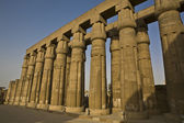 Columns at Luxor Temple, Egypt — Stock Photo