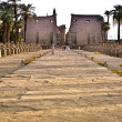 Avenue of Sphinxes between Karnak and Luxor Temples — Stock Photo