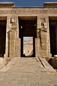 Jeroglíficos en el templo de medinat habu — Foto de Stock
