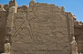 Pharaoh Slaying his Enemies — Foto Stock