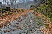 Mountain Roman road — Stockfoto