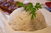 Boiled Rice with parsley branch — Stock Photo
