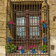 Flowerpots window — Stock Photo #39530409