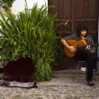 Stock Photo: Courtyard musician