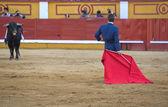 Placing the muleta — Zdjęcie stockowe
