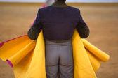 Yellow capote — Stock Photo