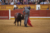 Spanish torero Miguel Angel Perera — Stock Photo