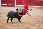 Bullfighter tumble — Stock Photo